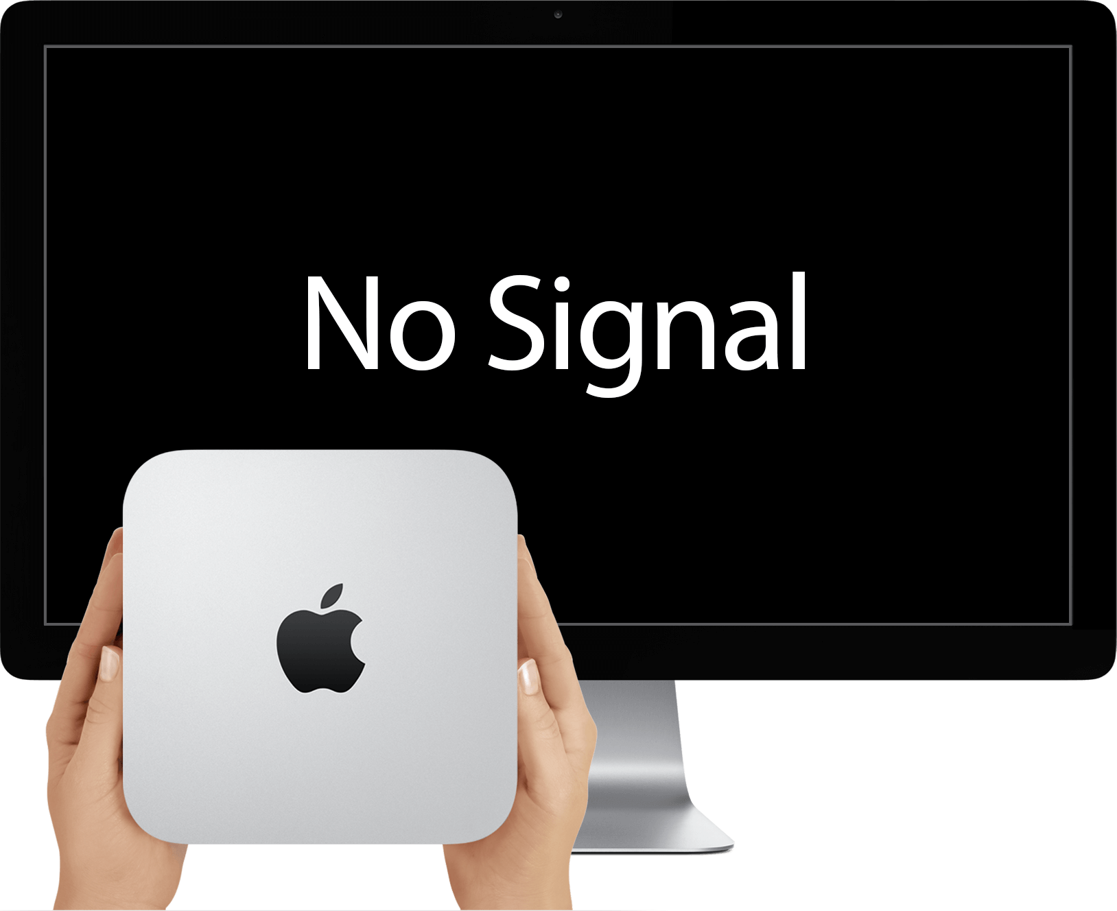 A Mac Mini and Apple Display. There is no video signal