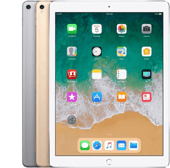 iPad Pro 12.9-inch (2nd generation) WiFi model.